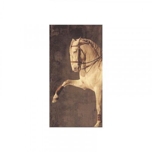 Carnet cheval