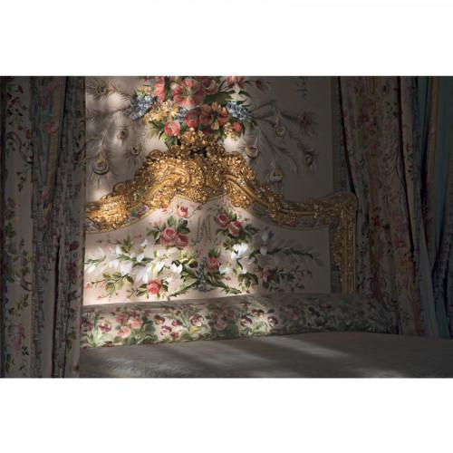 Le château de Versailles vu par ses photographes