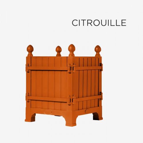 """Coloris """"Citrouille"""""""