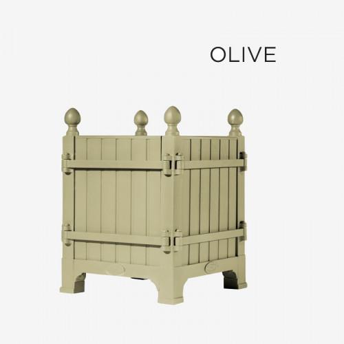 "Coloris ""Olive"""