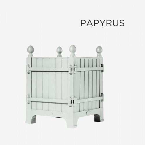 """Coloris """"Papyrus"""""""