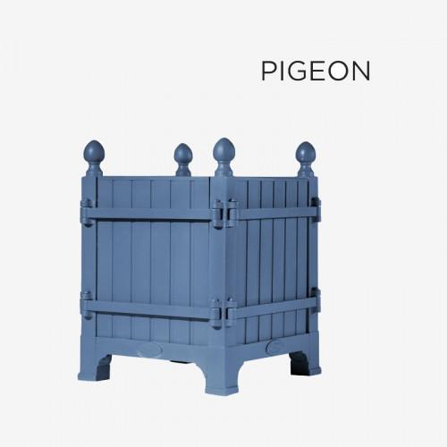 "Coloris ""Pigeon"""