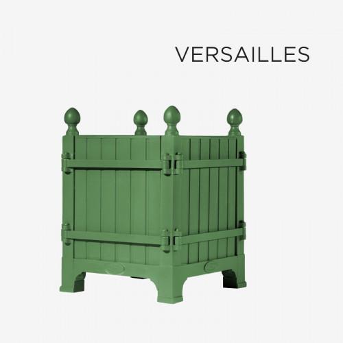 Caisse à Oranger «château de Versailles»