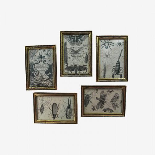 Coffret de 6 gravures de voyage